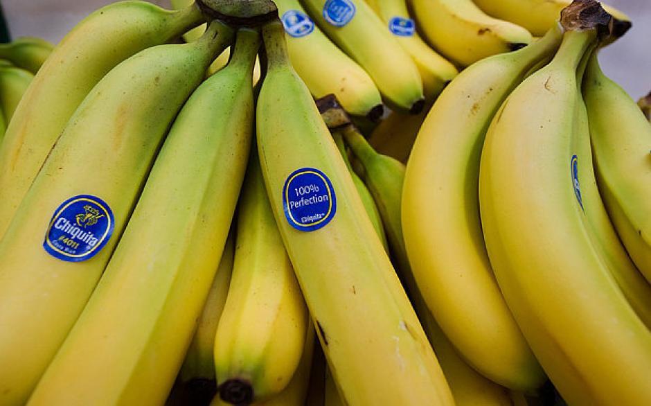 Los bananos Cavendish pueden desaparecer por una nueva plaga que afecta los cultivos. (Foto: www.telegraph.co.uk)