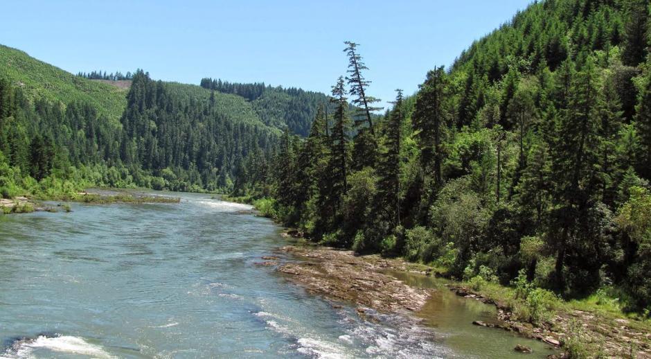 Un video grabado con un Dron pretende haber captado a Pie Grande en Idaho, Estados Unidos