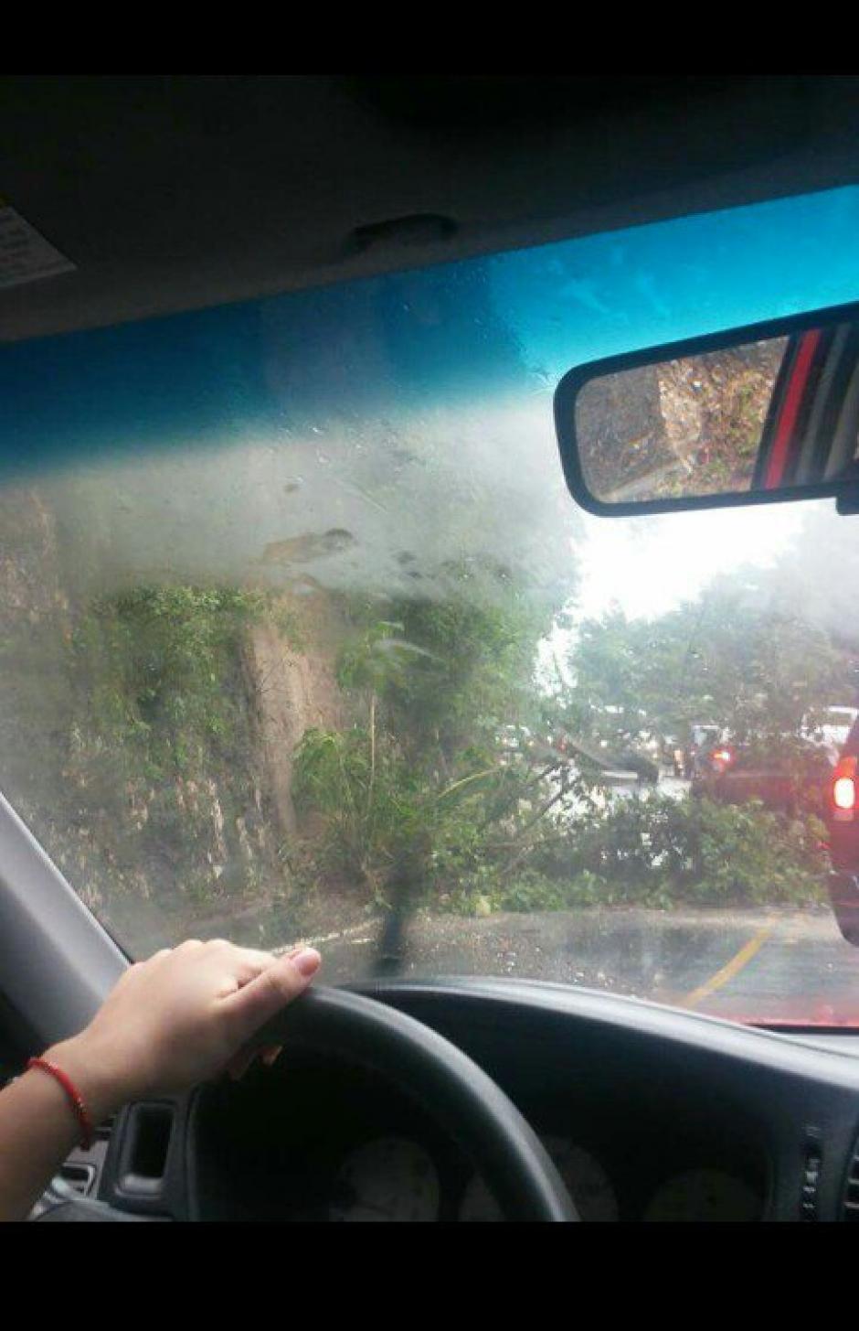 También se reporta la caída de un árbol en el tramo entre Boca del Monte y Villa Canales. (Foto: @InfoTransito)