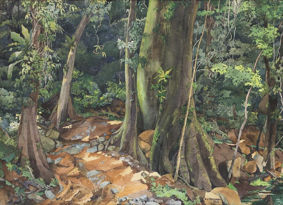 "No te pierdas ""Carmen L. Pettersen: Naturaleza, cultura y paisajes de la bocacosta guatemalteca"". (Foto: oficial)"