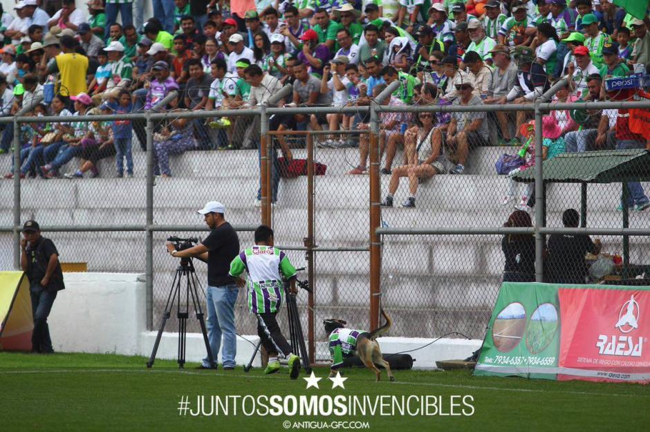 Coby y su amo corren alegres en el estadio Pensativo. (Foto: Antigua GFC)