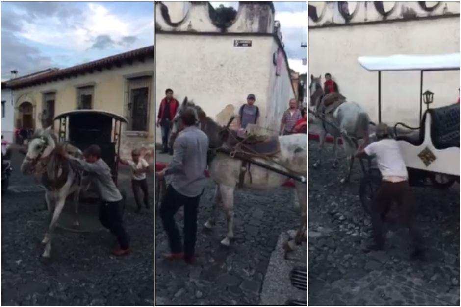 Una yegua se cansó de halar un carruaje y se detuvo a la mitad de la calle. (Captura Facebook)