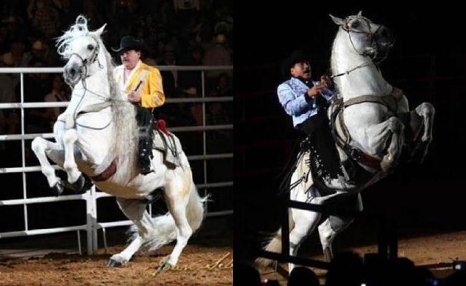 """""""Padrino"""" el caballo consentido de Joan Sebastian murió hace unos días."""
