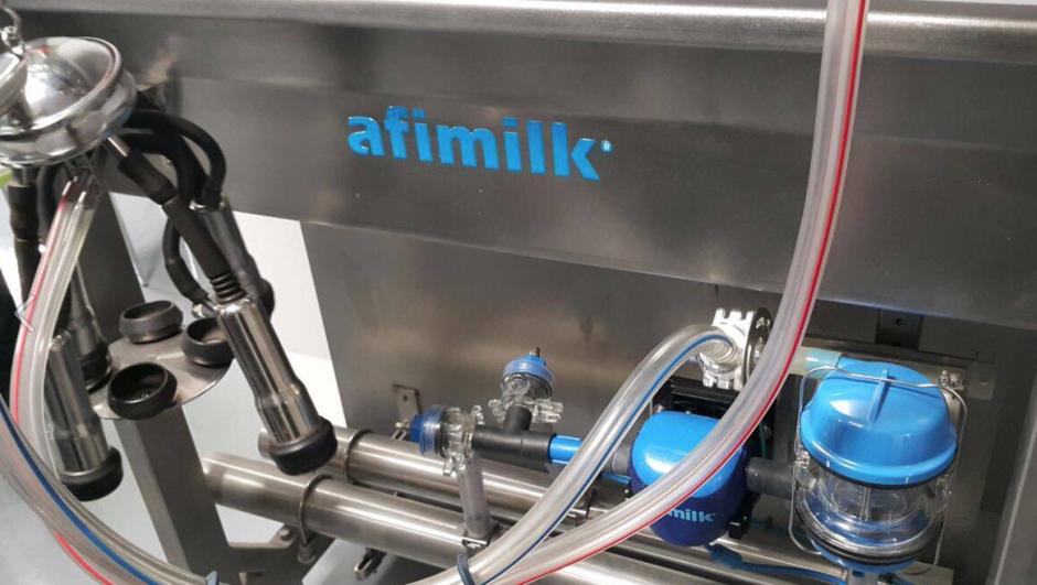 Morales conoció un sistema novedoso de extracción de leche de vacas. (Foto: Gobierno)