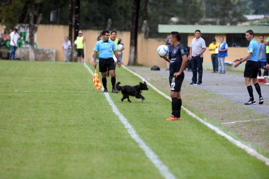 La situación arrancó las sonrisas de los jugadores y los árbitros. (Foto: Diego Galiano/Nuestro Diario)