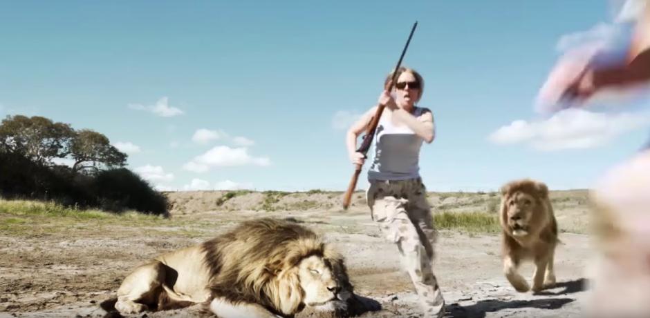 Sin darse cuenta, otro león aparece y los ataca. (Captura de pantalla: Jayden Tanner/YouTube)