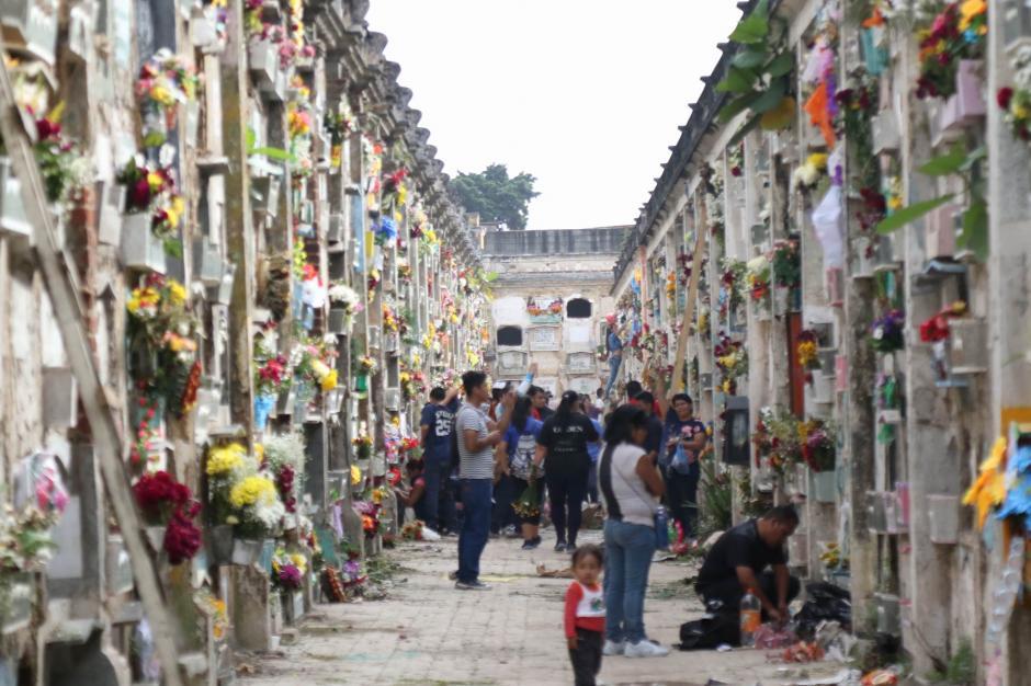 El colorido de las flores se podía observar en los pasillos del Cementerio General. (Foto: Alejandro Balán/ Soy502)