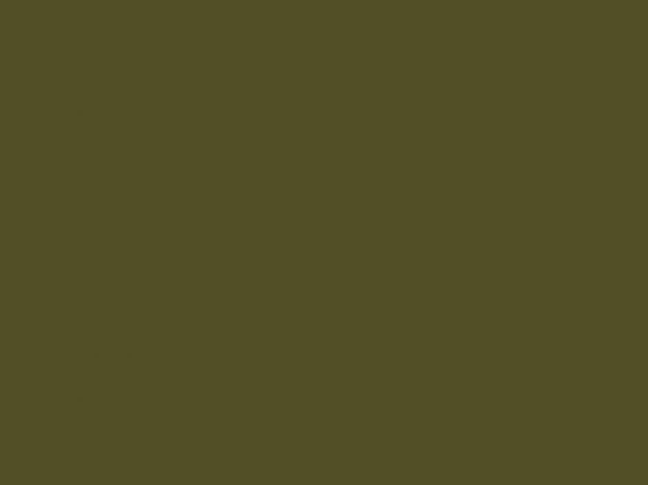 Oficialmente el color más feo del mundo es el Pantone 448 C. (Foto: mashable.com)