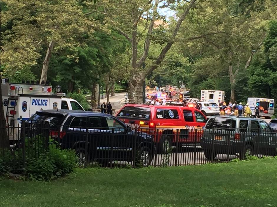 Unidades antiexplosivos llegaron a Central Park. (Foto: Twitter Josh Einiger)