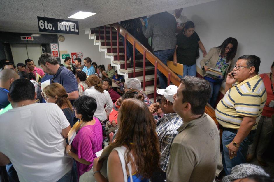 Todos los que poseen loros, pericas, serpientes o tortugas deben asistir a inscribirse. (Foto: Wilder López/Soy502)