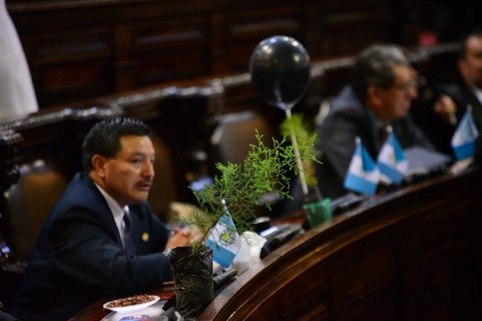 Los diputados encontraron una campaña para aprobar la Ley Probosque. (Foto: Wilder López/Soy502)