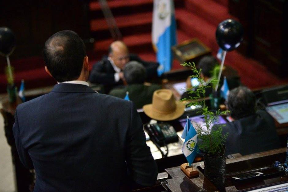 En cada curul los diputados encontraron una árbol para conocer una ley de bosques. (Foto: Wilder López/Soy502)