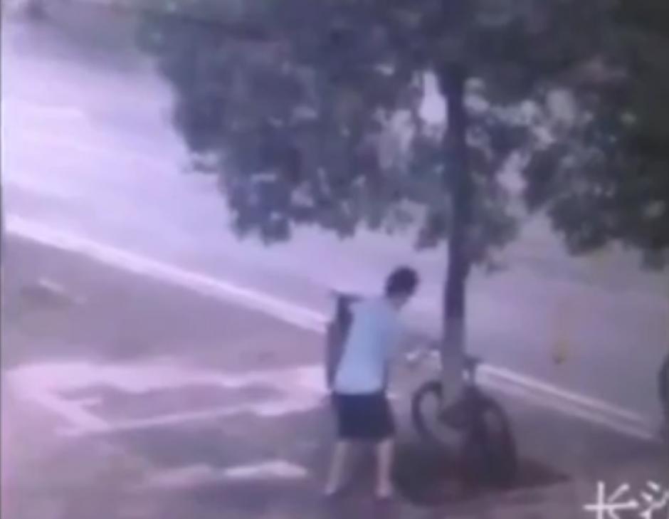 El hombre se acerca al árbol con un serrucho. (Foto: Live Leak/YouTube)