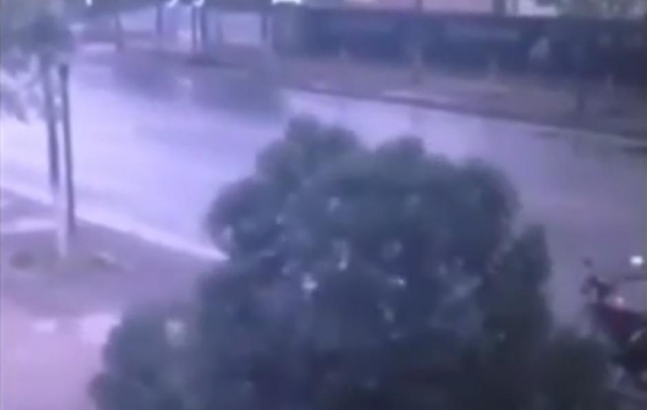 El individuo logra cortar el árbol. (Foto: Live Leak/YouTube)