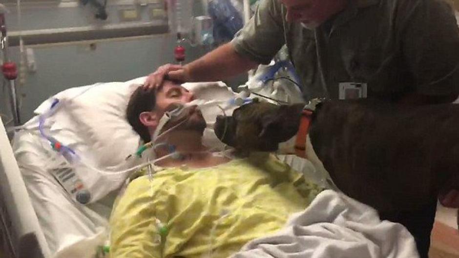 Ryan y su perrita Mollie se despidieron así en el hospital. (Foto: Captura de video)