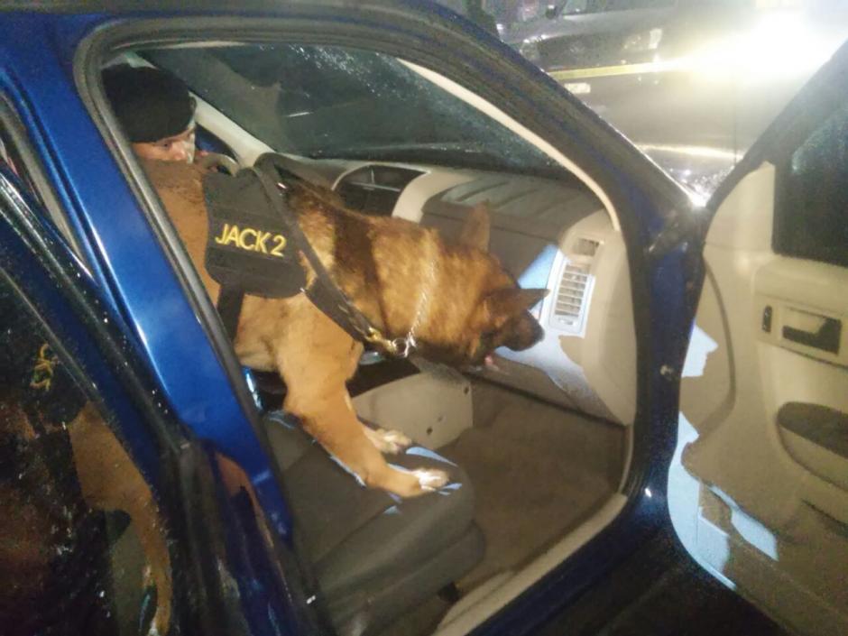 Los agentes de Policía utilizaron al canino Jack 2 para el rastreo del dinero. (Foto: PNC)