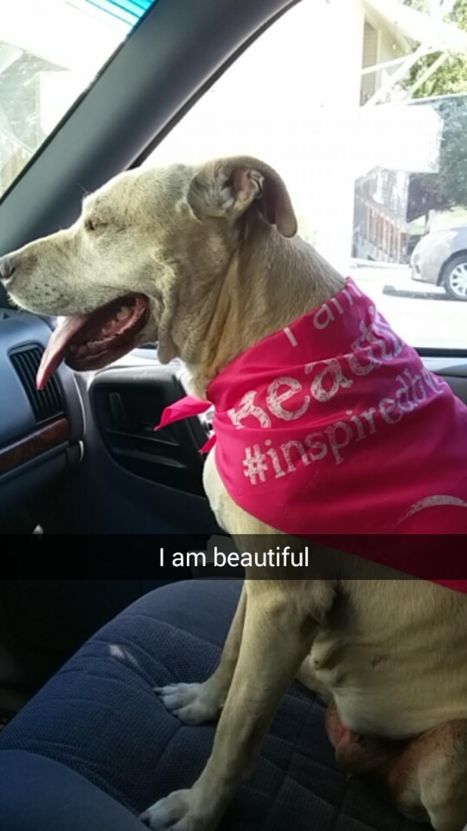 Hannah lucía hermosa. (Foto: Snapchat)