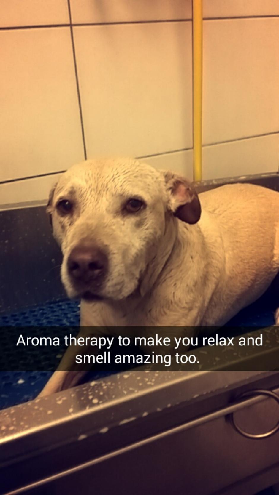hannah recibió un poco de aroma terapia. (Foto: Snapchat)