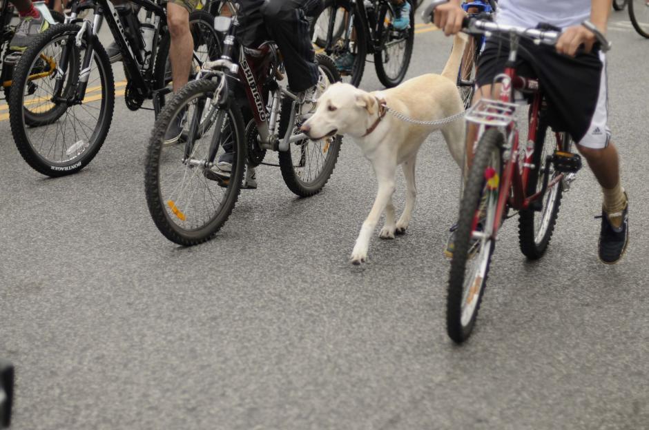Usar la bicicleta tiene múltiples beneficios para la salud y para la movilidad sostenible. (Foto: Archivo/Soy502)