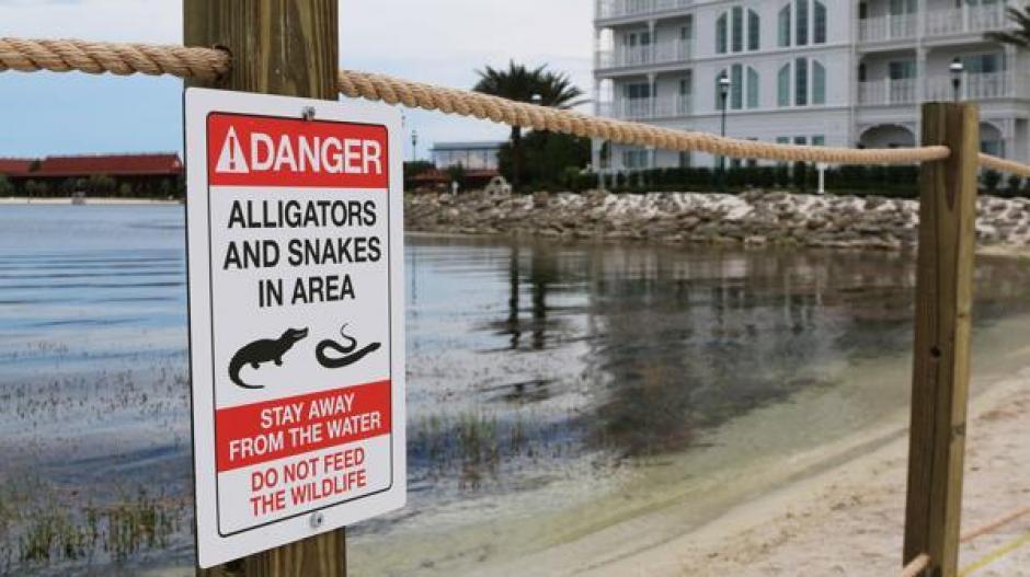 En el lugar se advierte sobre la presencia de caimanes y otros anfibios. (Foto: Infobae)