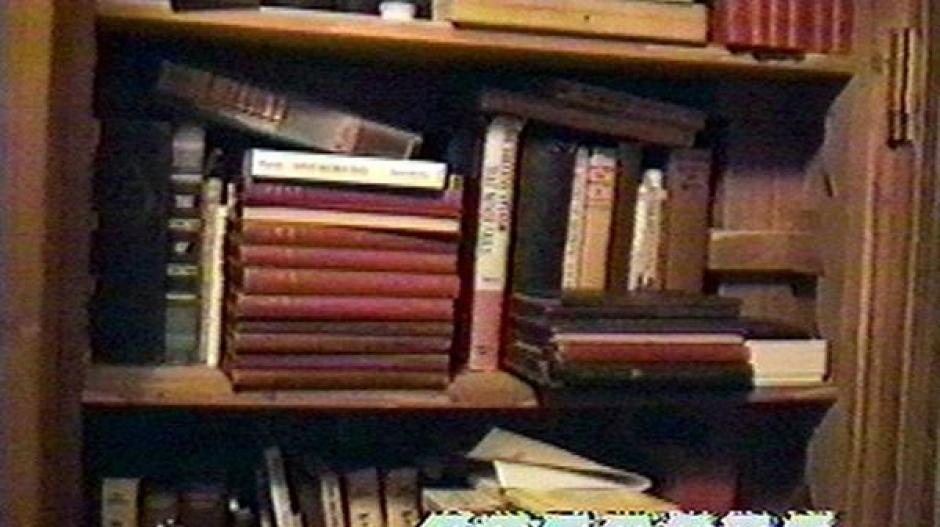 Algunos libros con material perturbador para menores. (Foto: Infobae)
