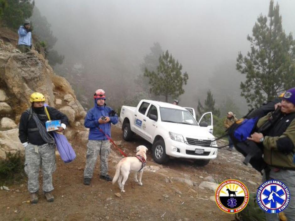 Drago, el perrito salva vidas realizó su primer rescate. (Foto: K-SAR Guatemala)