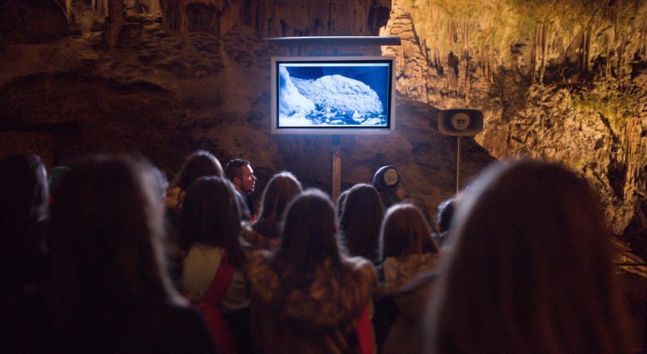 Eslovenia anunció el nacimiento del primer proteus anguinus, una especie rarísima que vive en el fondo de las cuevas del norte del Adriático. (Captura de pantalla: Postojnska jama Cave Grotte Höhle)
