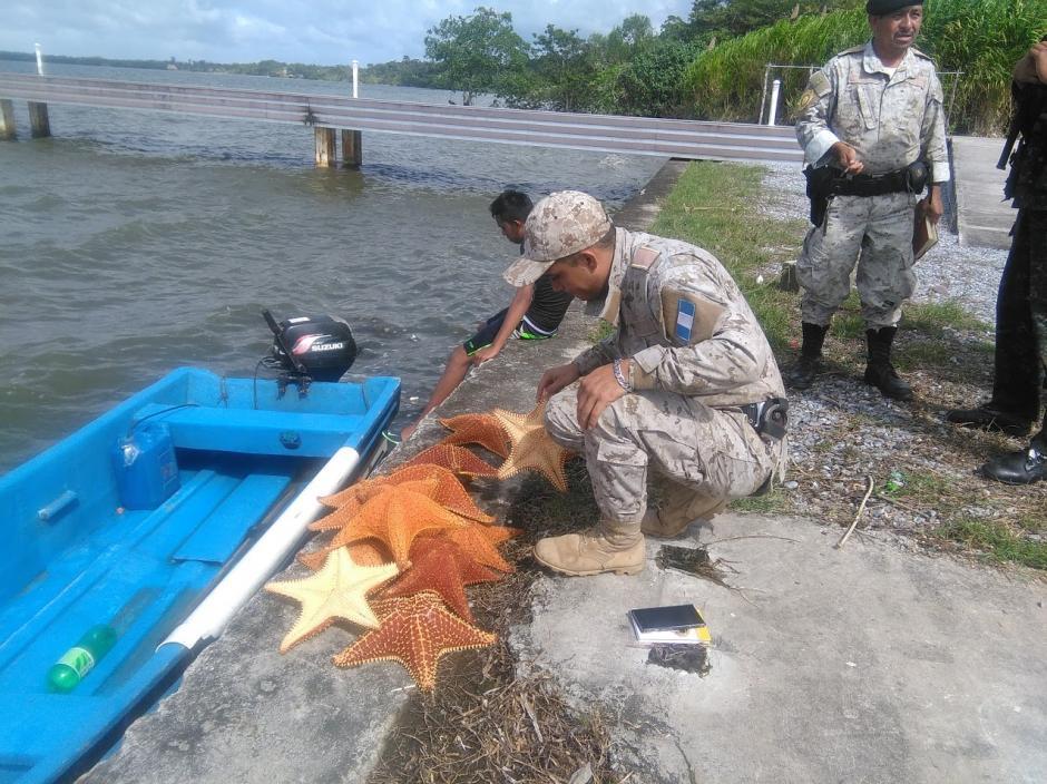 Los jóvenes pretendían vender las estrellas de mar. (Foto: Carlos Cruz/Nuestro Diario)