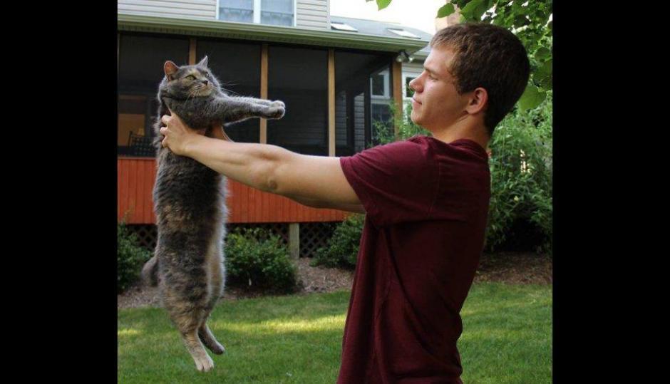El joven asegura que tiene una conexión especial con la gata.  (Foto: Facebook /Sam Steingard)