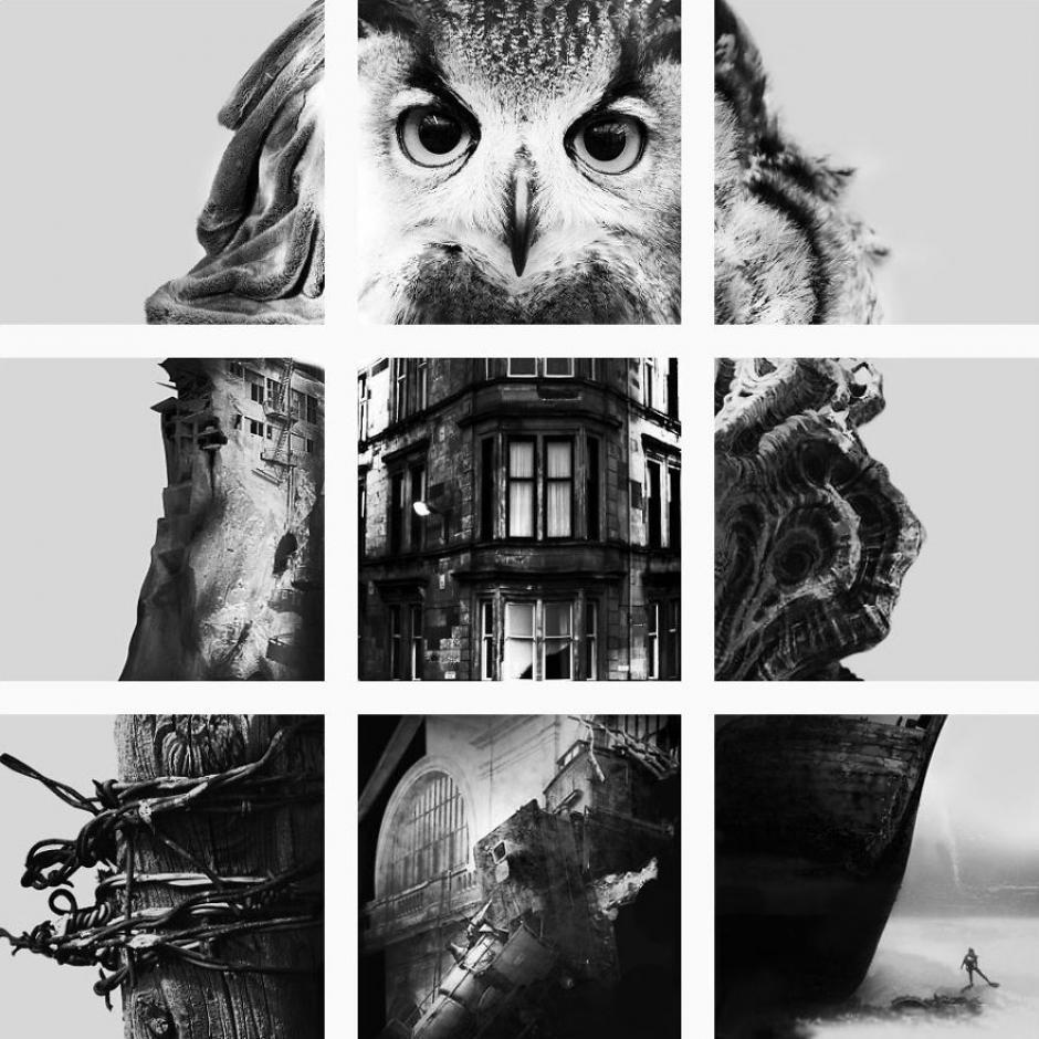 La fuerza de las imágenes hacen un gran impacto. (Foto: FatFeedZero/Instagram)