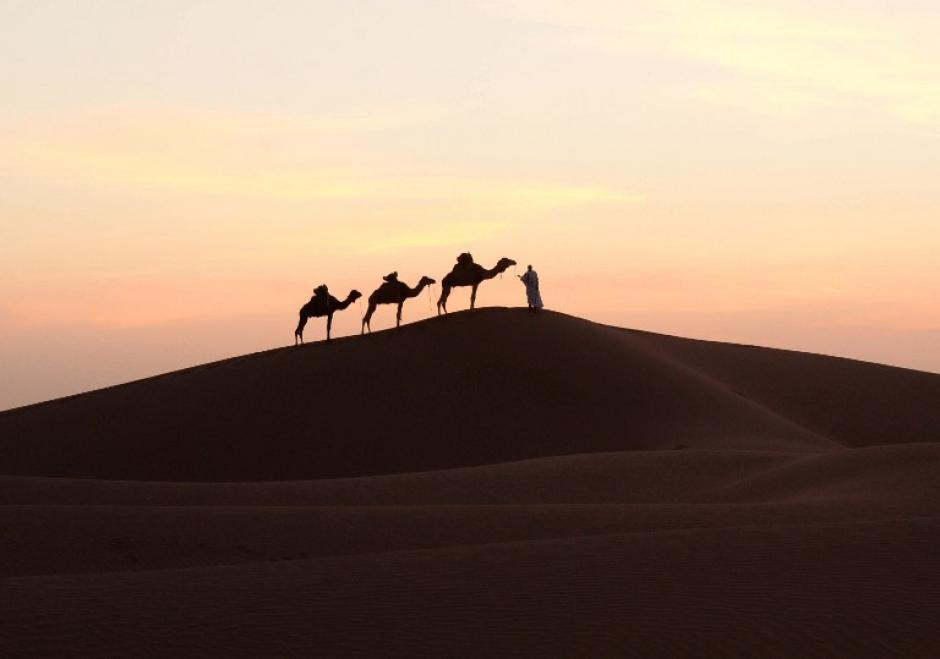 Un hombre entra en una duna de arena con sus camellos en Mhamid el-Ghizlane, en el desierto del Sáhara marroquí del sur. (Foto: AFP / FADEL SENNA)