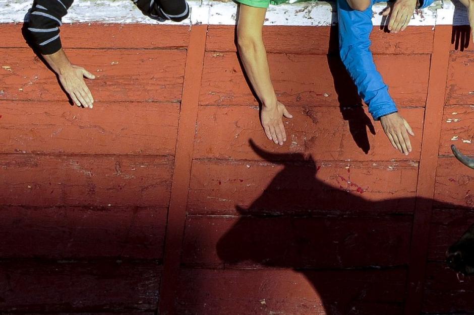 La sombra de un toro se proyecta en una pared de la plaza de toros de San Sebastián de los Reyes durante un festival de encierro, cerca de Madrid, el 28 de agosto de 2014. (Foto: AFP / PEDRO ARMESTRE)