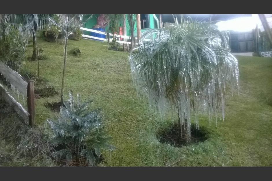 Las bajas temperaturas afectan el departamento de Quetzaltenango. (Foto: @ErickColop)