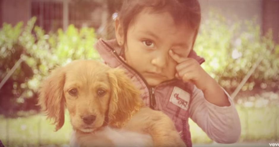 Este video llama a amar y respetar a quienes amamos, además de a la naturaleza. (foto: captura de pantalla)