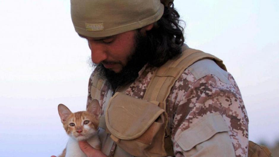 En otras ocasiones los islamistas habían posado con gatos.  (Foto: actualidad.rt.com)