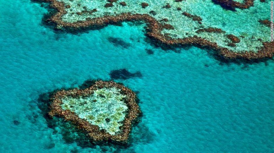 La Gran Barrera de Coral en Australia es un imán para los buceadores por la diversidad marina que posee. Tiene más de 400 diferentes especies que van desde ballenas barbadas hasta erizos espinozos.