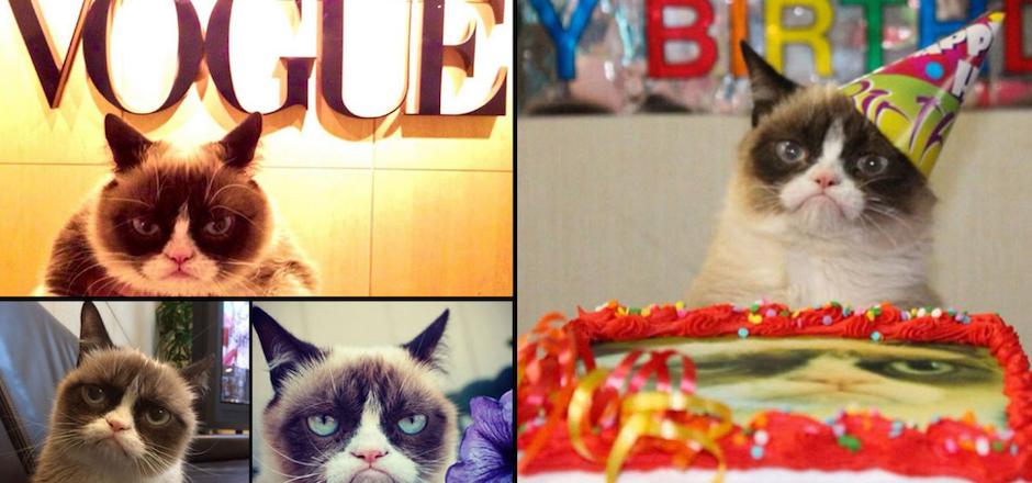 La gata consentida de las redes sociales cumplió dos años, celebrándolo a lo grande. (Foto: Grumpy Cat oficial)