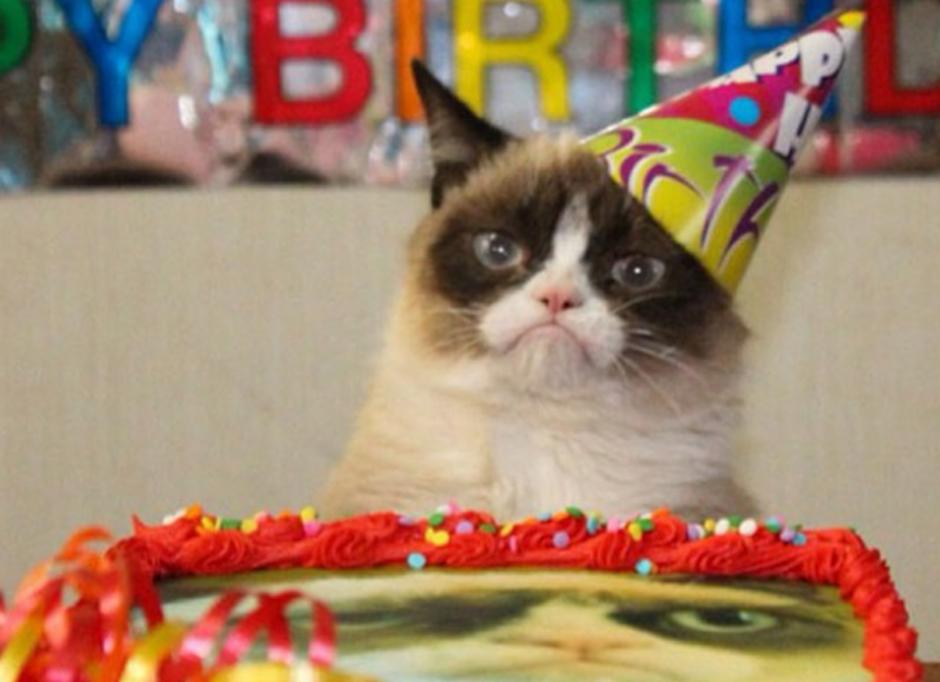La gatita es tan famosa que protagoniza una serie de comerciales de una famosa marca comida para gatos. (Foto: Grumpy Cat oficial)