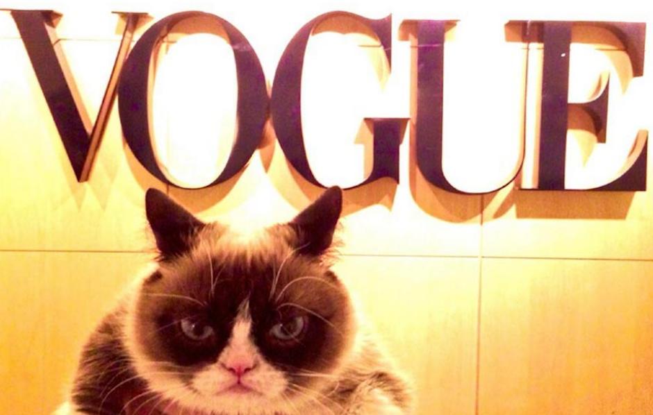 Grumpy cat visitó las instalaciones de la famosa revista Vogue, en Nueva York. (Foto: Grumpy cat oficial)