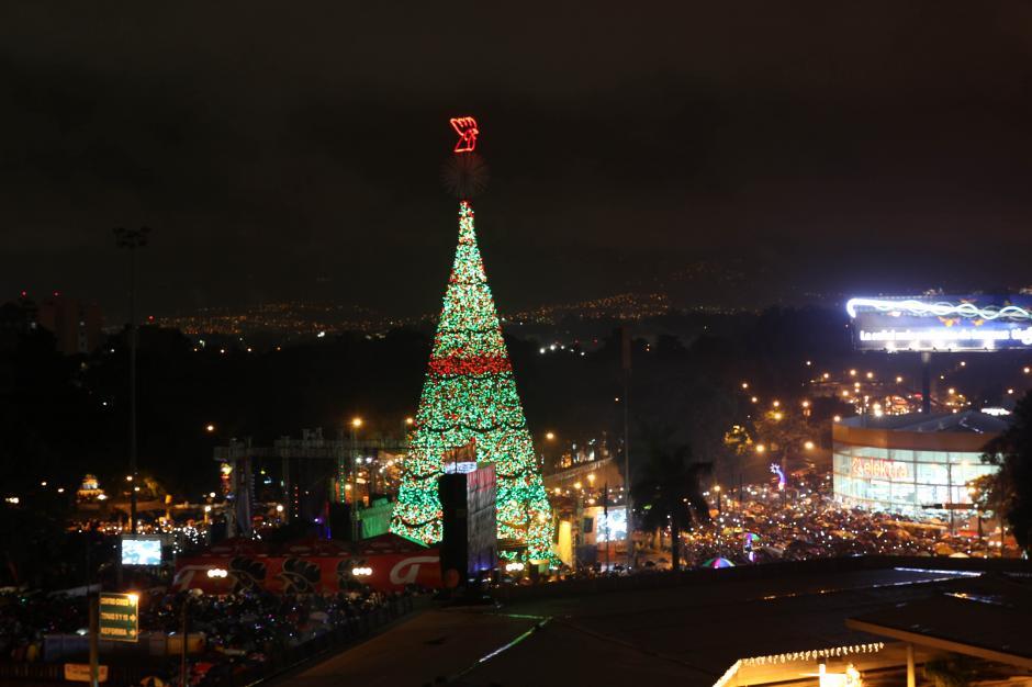 Todos los días a partir de las 18 horas el Árbol Gallo se encenderá y se convertirá en parte de las luces de la ciudad (Foto: Esteban Biba/Efe)