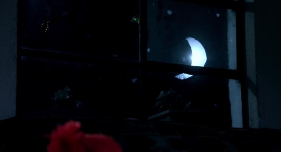 """Asiste a la muestra """"Cortos finos para tu cabeza"""" a las 7 de la noche (Foto: los habitantes del aire)"""