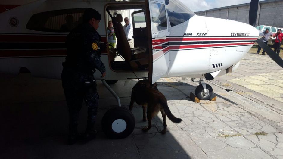 Con elementos caninos la PNC busca indicios de traslado de droga. (Foto: PNC)