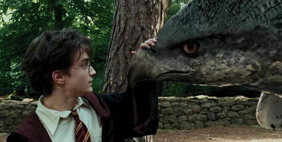 Antes de acercarse a esta ave en la película era necesario inclinarse. (Foto: harrypotter.wikia.com)