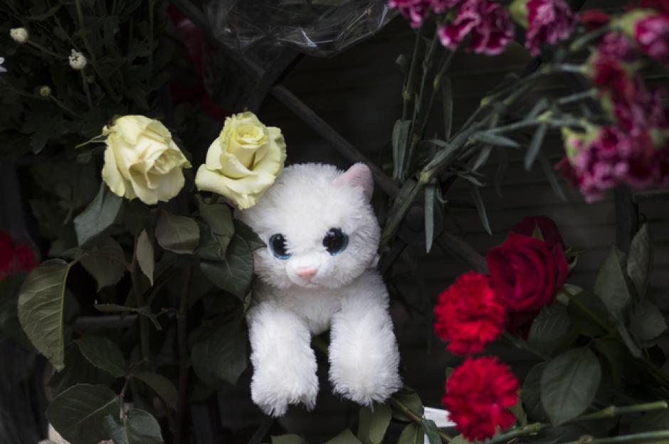 Un juguete y flores en recuerdo a las víctimas del avión que se estrelló en Egipto. (Foto:dailymail.co.uk)