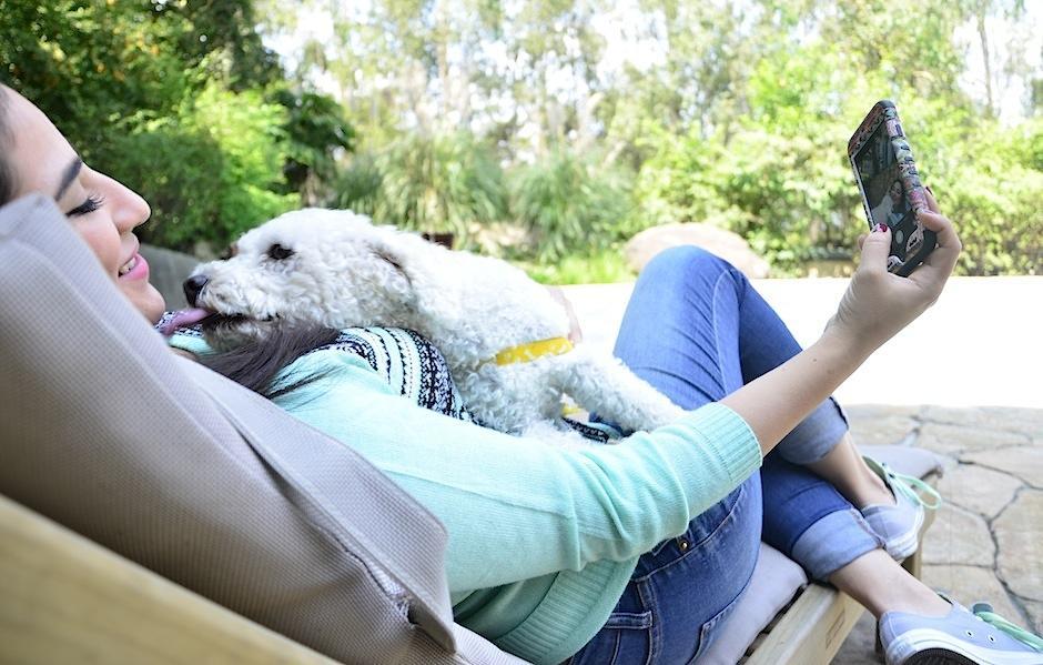 Si hay jardín, tu perrito disfrutará las vacaciones. (Foto: Selene Mejía/Soy502)