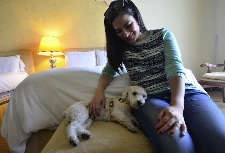 Hotel Vista Real te permite hospedarte con tu mejor amigo. (Foto: Selene Mejía/Soy502)
