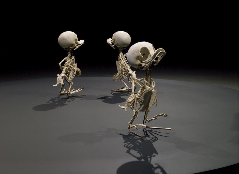 Hugo, Paco y Luis observan la escena en la que su peculiar tío está en aprietos.(Foto: iflscience.com)