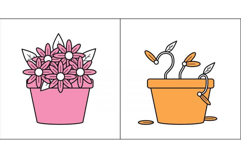 Algunos aman y cuidan las plantas, otros, son incapaces de hacerse cargo de una. (Imagen: society6.com)