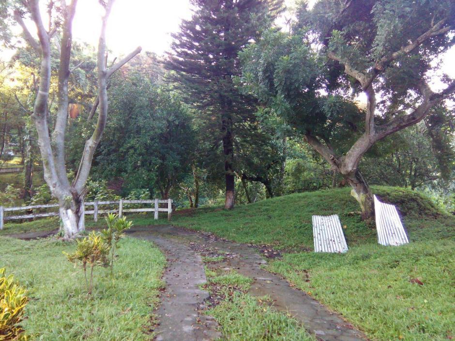 Los extensos terrenos de las viviendas cuentan con caminos rodeados de vegetación. (Foto: MP)