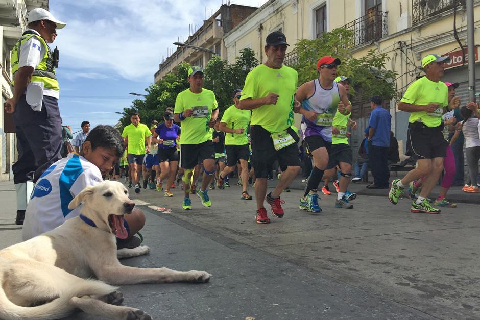 Un perro y un niño esperan sentados el paso de los competidores de la 21K